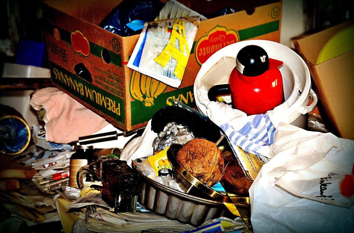 Entrümplung Müllentsorgung Reinigung Wespen Ungeziefer Maden Bekämpfung Notdienst